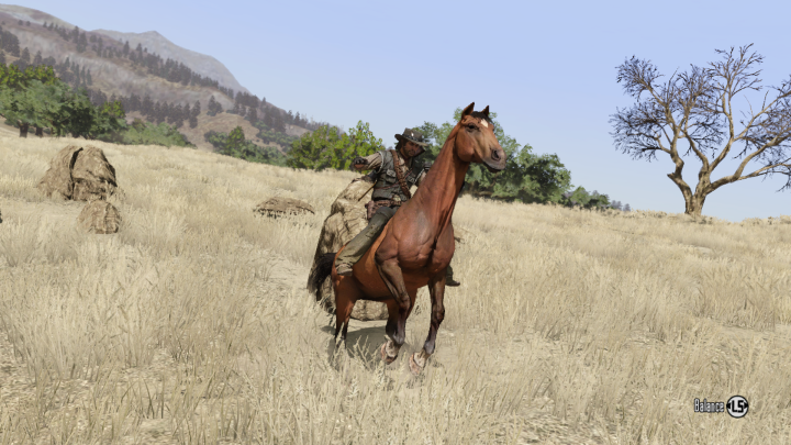 Red Dead Redemption (2).png