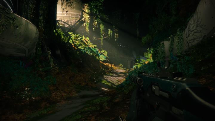 Destiny 2 Arboretum