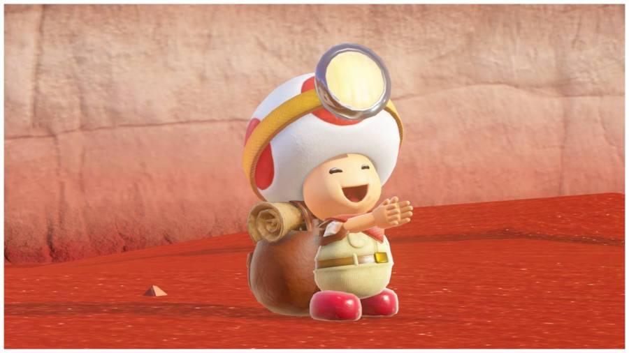 Super Mario Odyssey Happy Toad